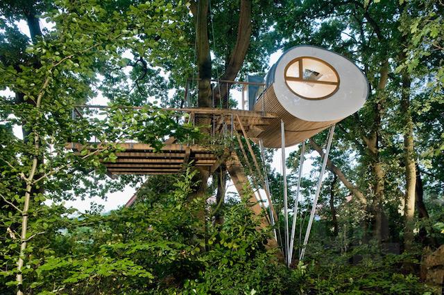 Къща на дърво Djuren
