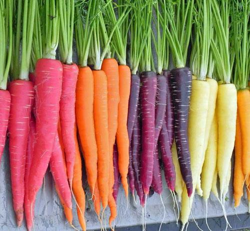 carrot-colour-mix