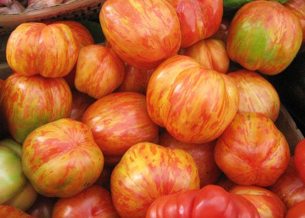 tigerella-tomatoes