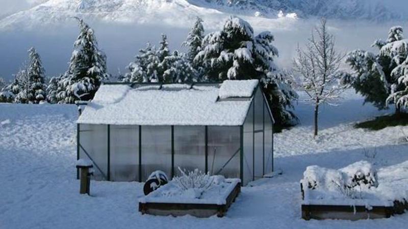 Собствено производство на зеленчуци през зимата
